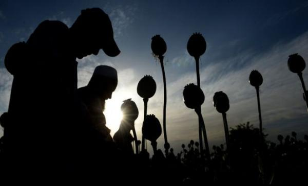 #Iran&#39;s drug problem: Addicts &#39;more than double&#39; in six years #Afghanistan #News #Europe #smuggling   http:// iranprobe.com/explore/news/i ran-s-drug-problem-addicts-more-than-double-in-six-years.html &nbsp; … <br>http://pic.twitter.com/qfyRCIK4hS