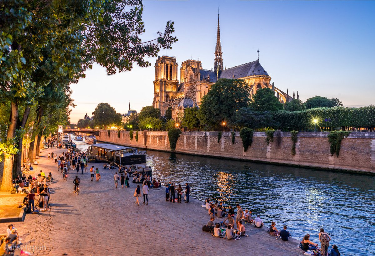 City lights: Notre-Dame Cathedral, #Paris, #France <br>http://pic.twitter.com/A9bYC1RzWs