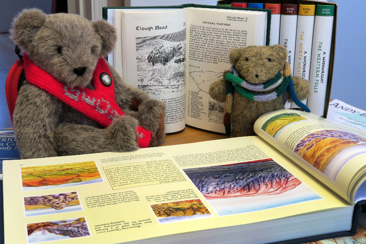 #BrodieBear &amp; his pal George r loving #WainwrightsInColour by #AndyBeck #NotJustLakes #LakeDistrict @TrailMagazine Get yr copy here:..<br>http://pic.twitter.com/mF3KM7moML