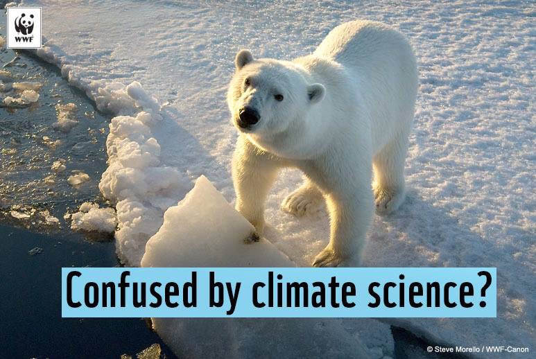 #polarbear   Polar bears are being deprived of their habitat as arctic sea ice declines every year.  #ClimateChangeisReal <br>http://pic.twitter.com/VMBiIundgo
