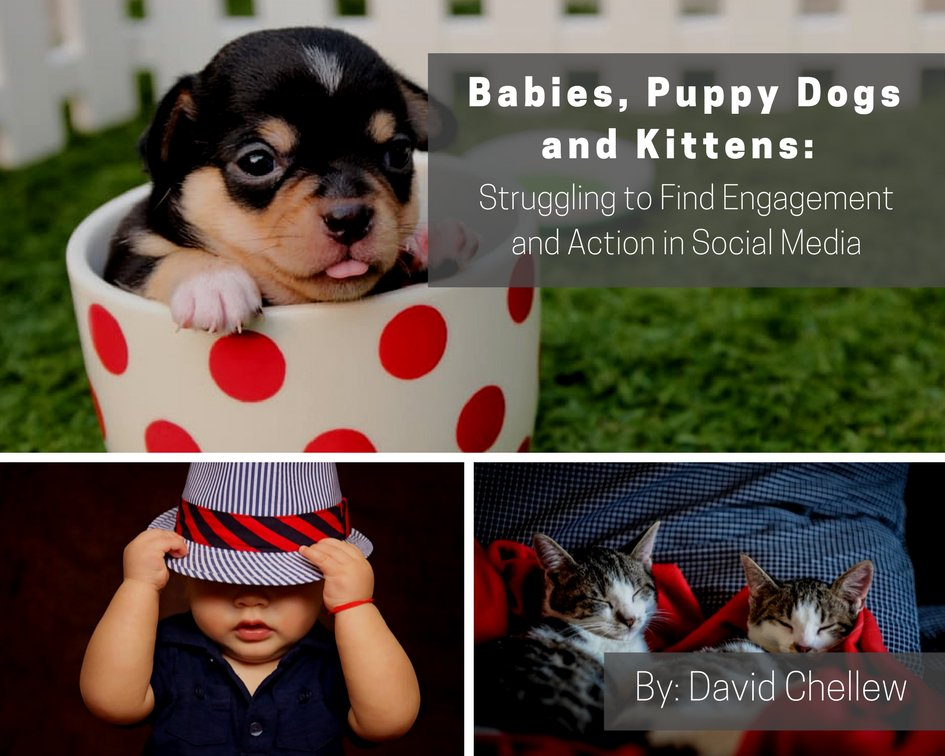 Market Commentary: Babies, Puppy Dogs and Kittens:  Struggling to Find #Engagement and Action in #SocialMedia  https:// goo.gl/cQQSuG  &nbsp;  <br>http://pic.twitter.com/KNI92HfnNr