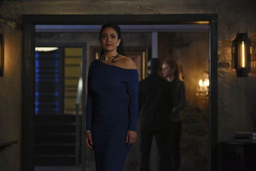Welcome Mrs. Lightwood back to the New York Institute in FOUR hours, E...