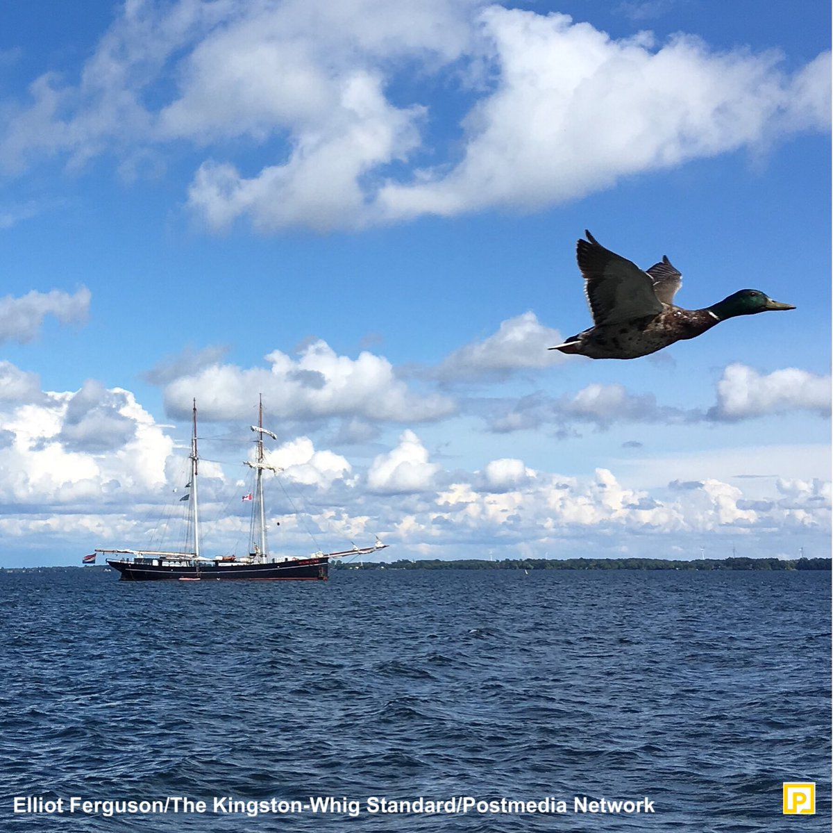 The @WyldeSwan, a 97-year-old Dutch sailing ship, sits at anchor off #ygk. The ship is on a regatta from Bermuda to Hamilton. <br>http://pic.twitter.com/UGgmK5PpVR