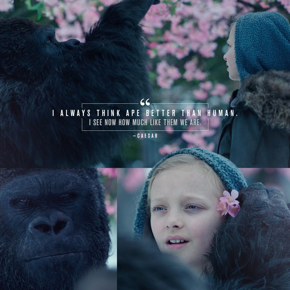 """""""I see now how much like them we are."""" #WarForThePlanet https://t.co/w..."""