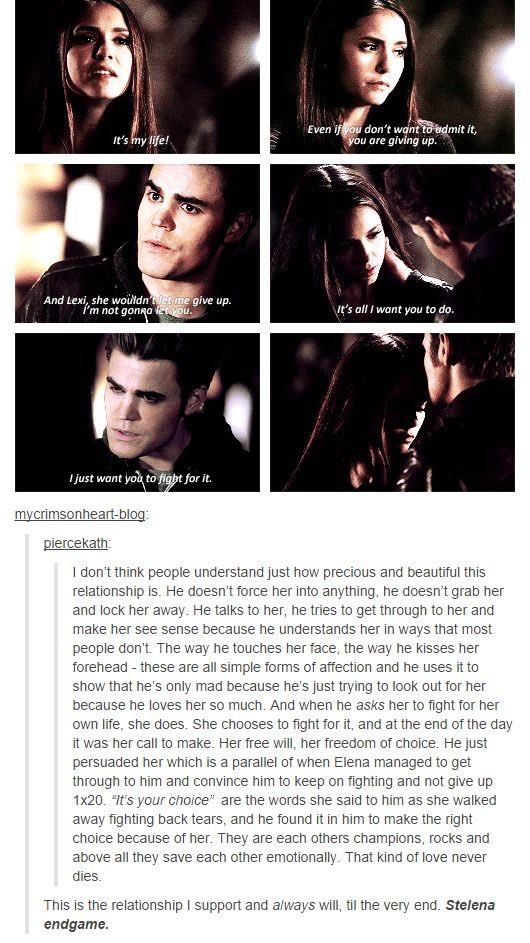 wow stelena was really THAT ship