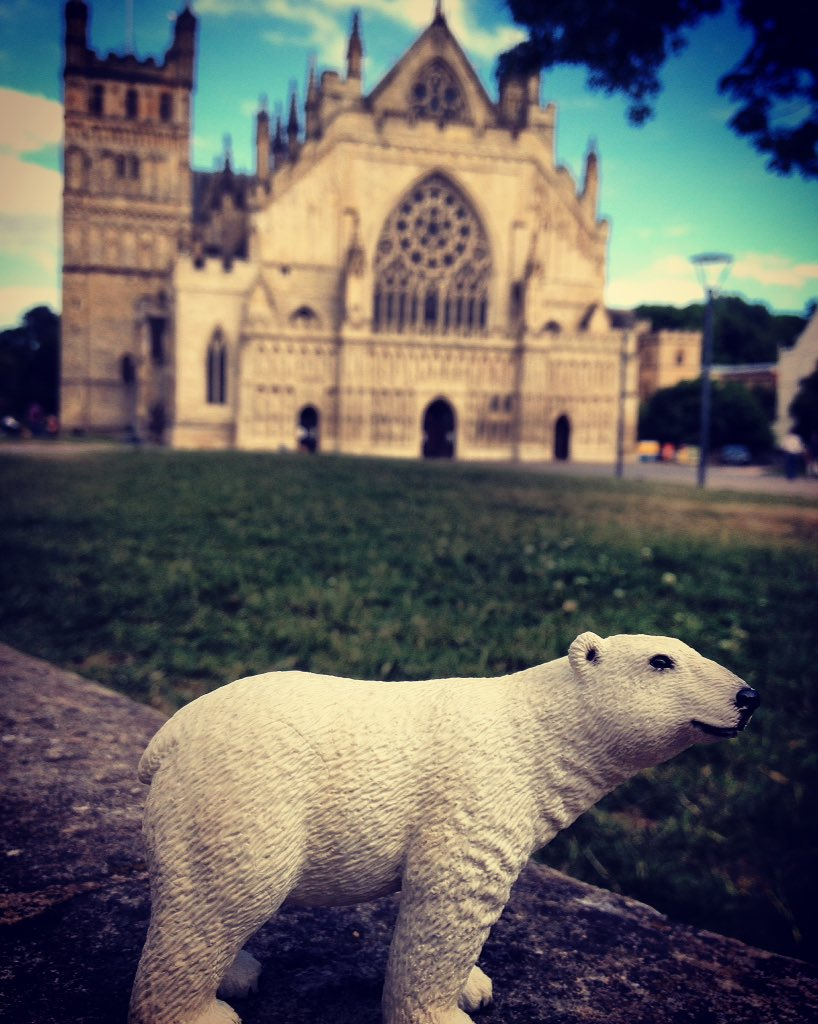 Preaching to the Converted. #padeapix #Exeter #cathedral #exetercathedral #Devon #England #polarbear #PicturingPolarBears #saveourseaice<br>http://pic.twitter.com/YM09WcS0GT