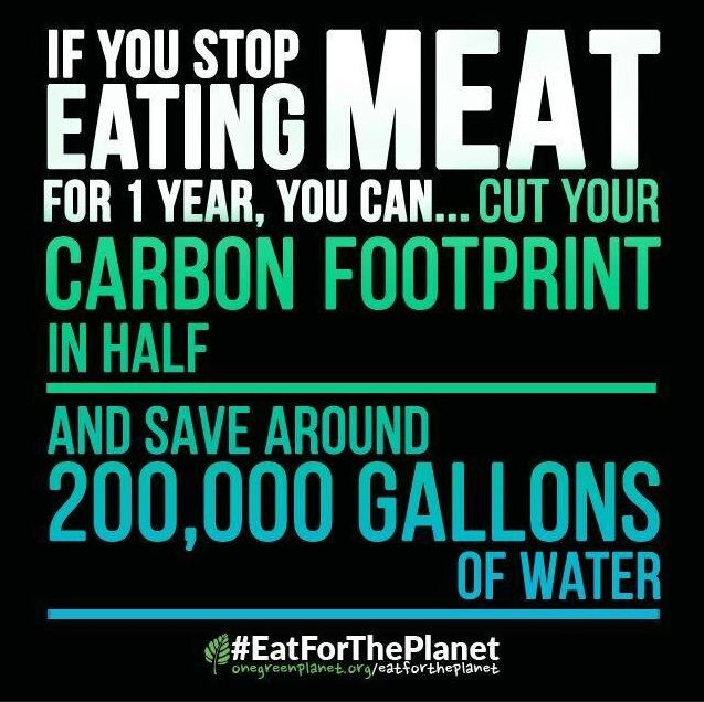#MeatFreeMonday #EatForThePlanet https://t.co/MDfgnqCHxA