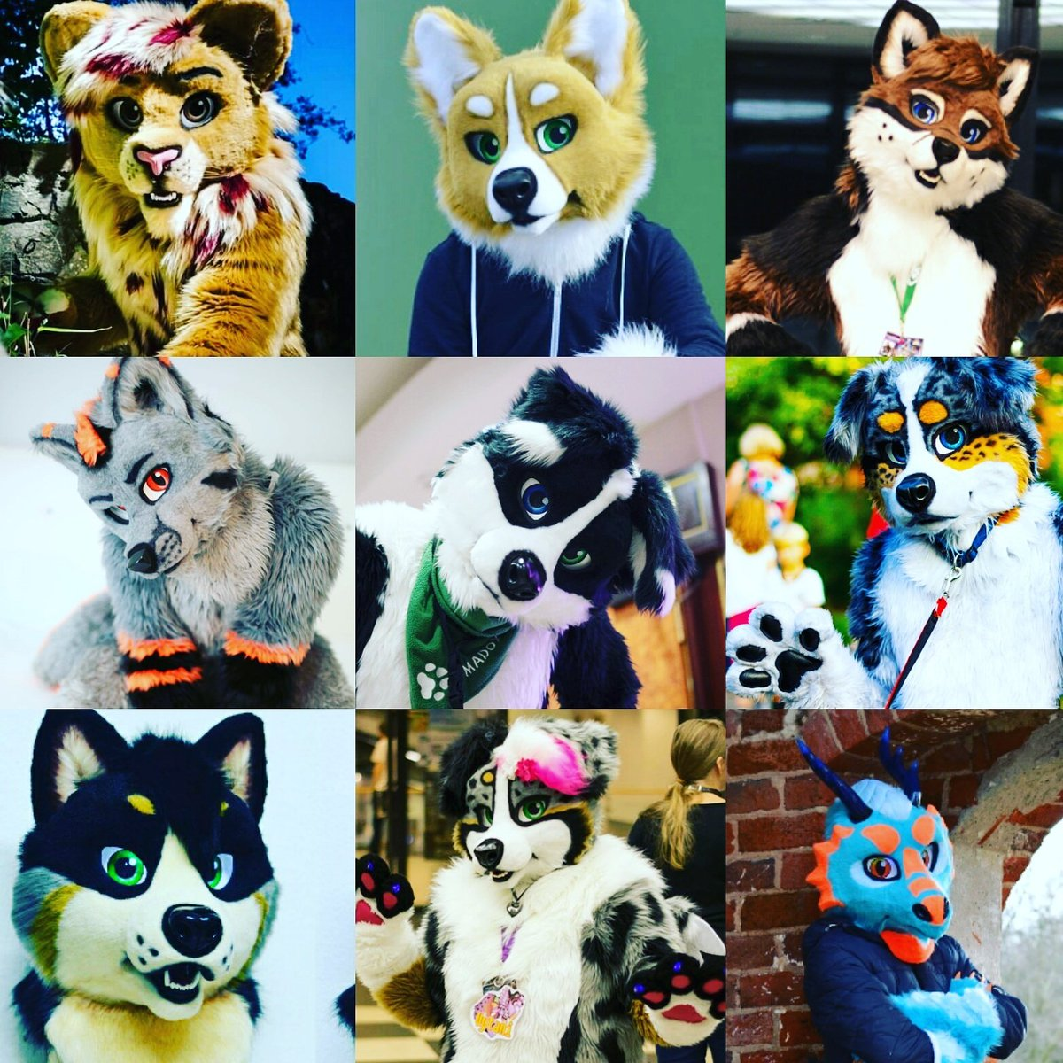 Colage of my latest fursuit builds  #fursuits #furry #fursuit #fursuitheads #movingjaw #lion #Corgie #fox #collie  #shibainu #dragon<br>http://pic.twitter.com/GQqBeGqU9m