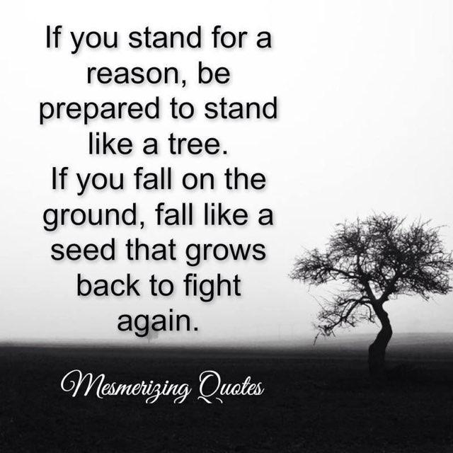 Standing or Falling  We are always Growing.  #Motivation #LifeLessons #MentallyTough #Faith #Inspiration #Growth<br>http://pic.twitter.com/RnuxldlLR7