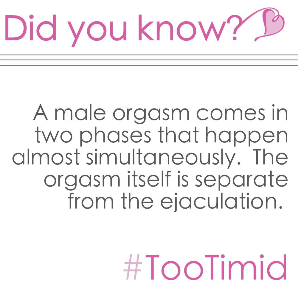 Tootimid Com On Twitter Science Who Knew Didyouknow Facts Orgasmic Thefinishline Sexfacts Tootimid coupon code & promo codes. twitter