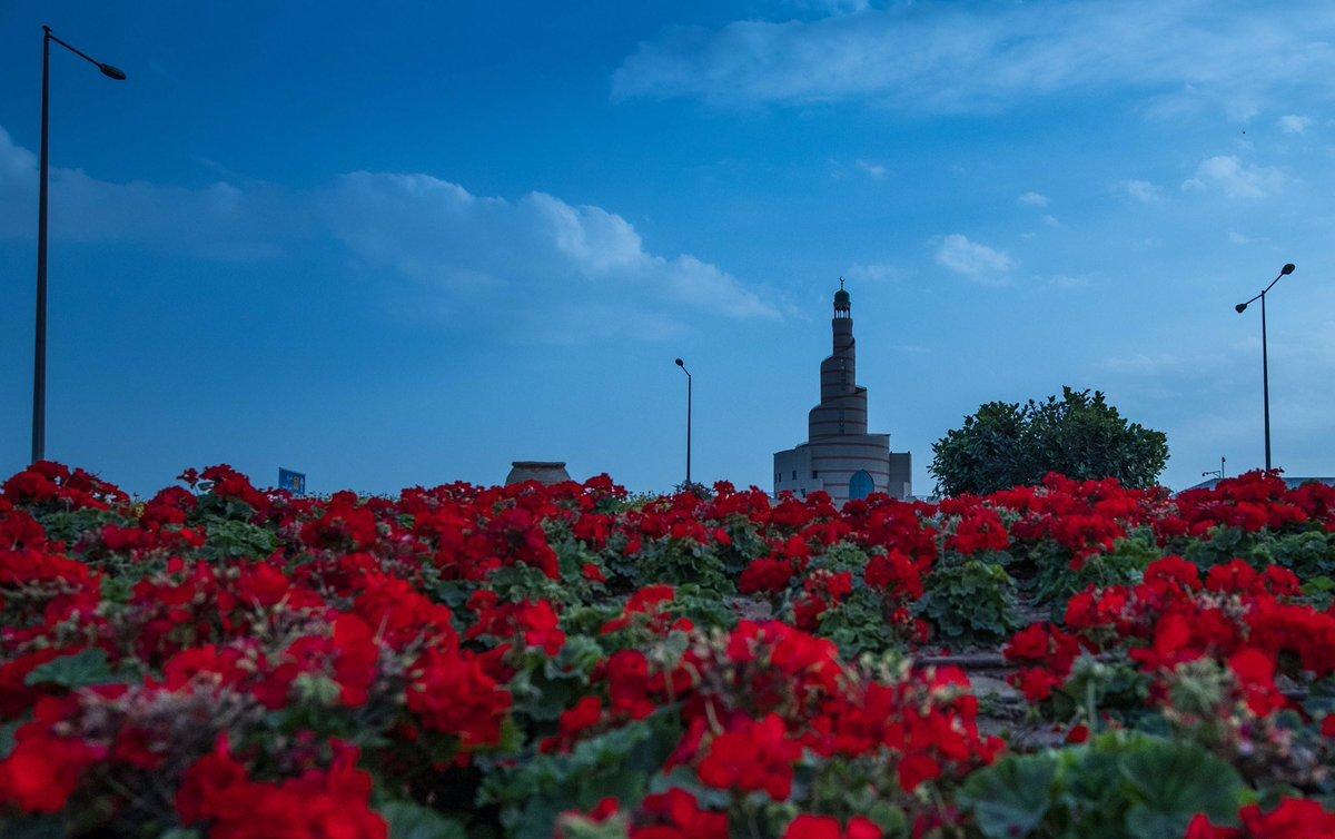 #صباح_الخير يا وطني..#قطر #الوطن https://t.co/lWjm8gbV7w