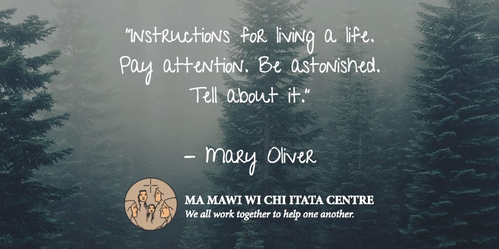 Ma Mawi Wi Chi Itata On Twitter Instructions For Living A Life