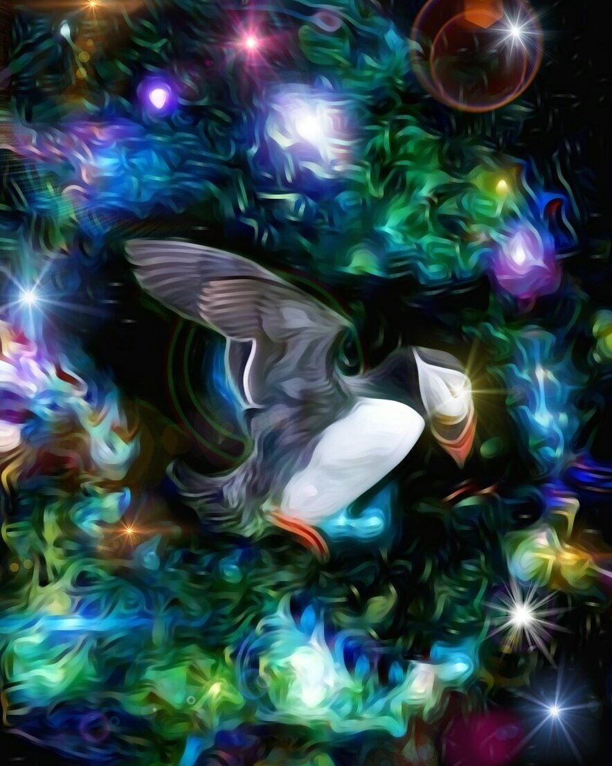Cosmic Puffin, #cosmic #puffin<br>http://pic.twitter.com/KjfQLGjBQb