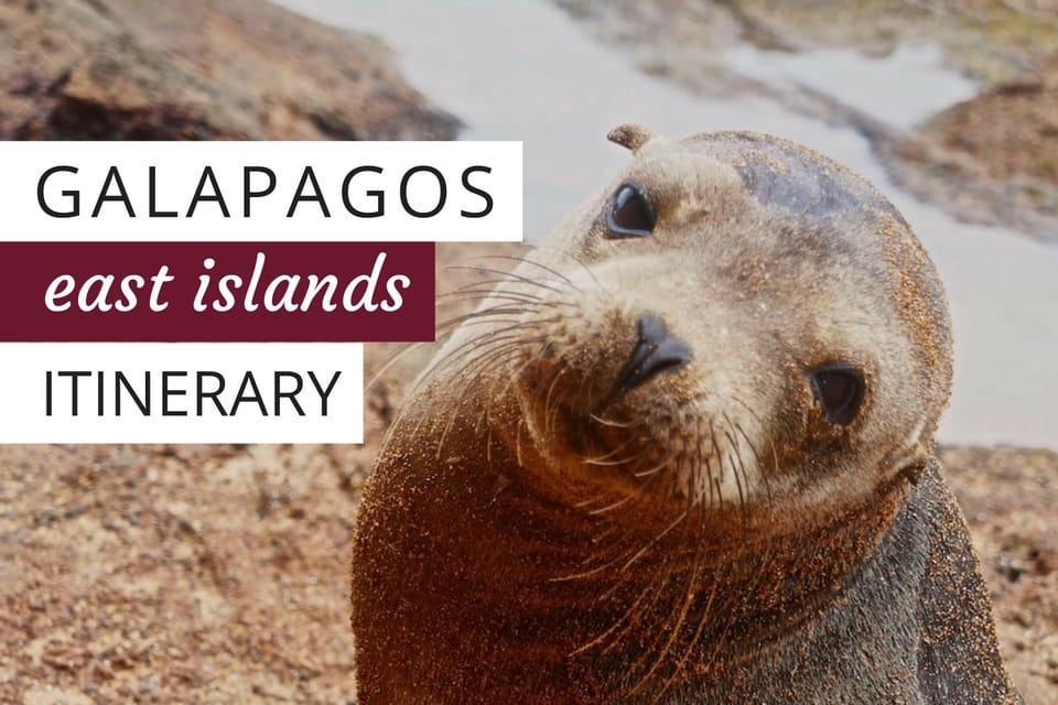 #Galapagos East islands itinerary on the Passion luxury yacht  https:// nomadicboys.com/galapagos-isla nds-cruise-eastern-islands-itinerary/?utm_source=ReviveOldPost&amp;utm_medium=social&amp;utm_campaign=ReviveOldPost &nbsp; …  #ecuador <br>http://pic.twitter.com/nWHYl7oH7I