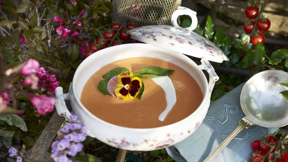 Crema de tomate y albahaca y otras cremas fr as para cenar - Cenar ligero para adelgazar ...