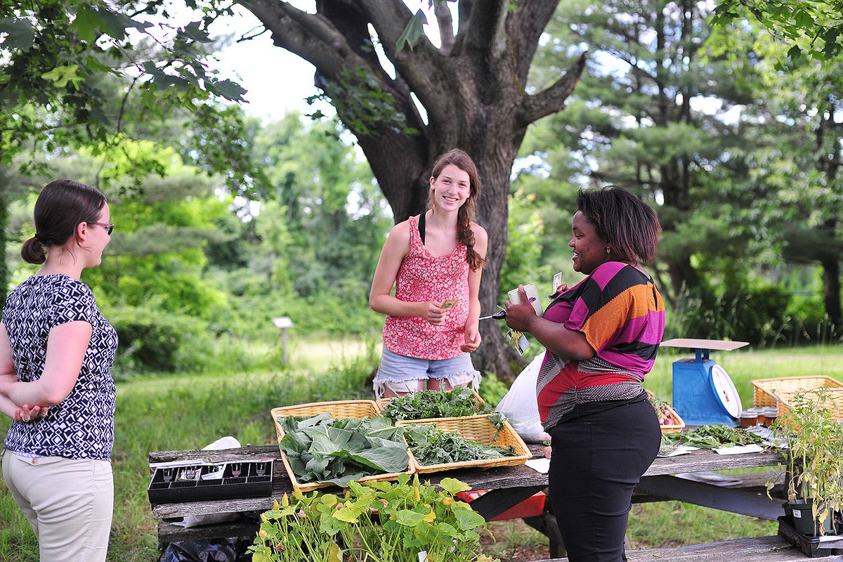 test Twitter Media - The Long Lane Farm Stand is open 3–5pm today! Pick up organic produce grown by students. Open every Tues thru July. Cash only. 🌿🌱🍅🌽 https://t.co/OT3Y11ihWY