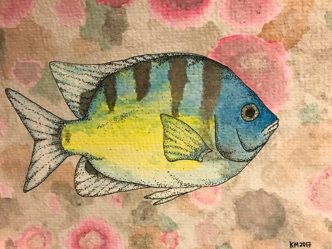 Started drawing &amp; painting again. here&#39;s one of Hawaiian sergeant #fish-did PhD work on these guys #sciart<br>http://pic.twitter.com/QnyZvhJ1Hn