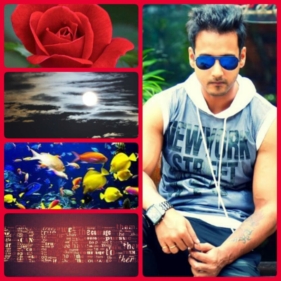 #Flower attracts in GARDEN #Moon attracts in SKY #Fish attracts in WATER #Dreams attracts in SLEEP @Yash_Dasgupta attracts in FILM He is <br>http://pic.twitter.com/dWVttzuL5t