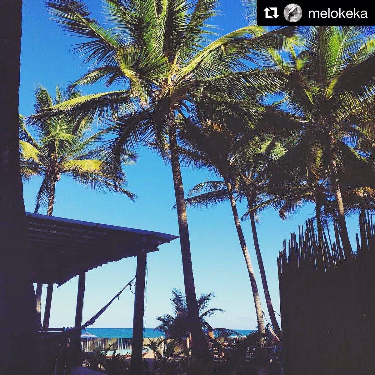 #Repost @melokeka (@get_repost) ・・・   Beautiful day in paradise!  #inverno #sqn #diaDeSol #paraiso #vemPraDreamland<br>http://pic.twitter.com/6uUkCpY3ls