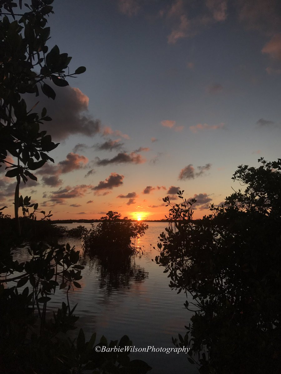 If I can&#39;t get sun for #sunrise I&#39;ll settle for a #keywest #sunset among the mangroves! #geigerkey #flkeys #homesweethome <br>http://pic.twitter.com/Yq2mVAjTjT