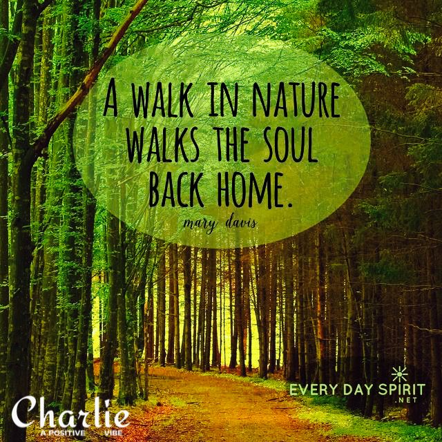 """Back To Nature Quotes: POSITIVE CHARLES On Twitter: """"A Walk In Nature Walks The"""