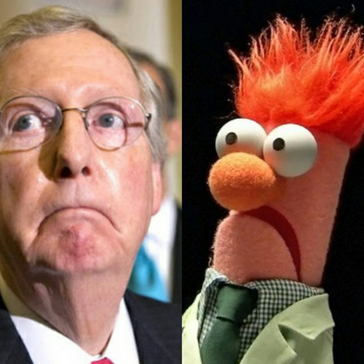 They found a picture of a Young Mitch Mcconnell...