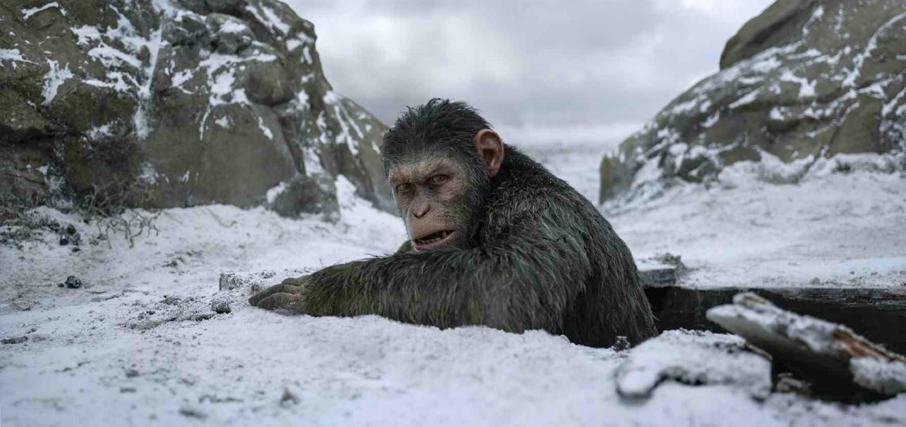 The Final War for the Planet of the Apes Trailer Revealed
