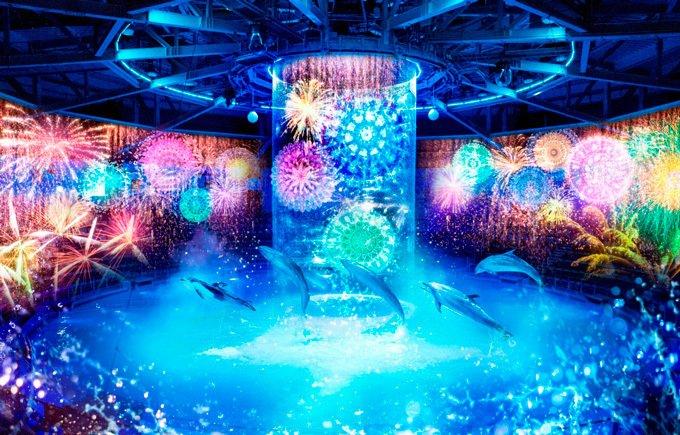 「花火アクアリウム バイ ネイキッド」イルカショーが大迫力の花火で彩られる、アクアパーク品川にて - https://t.co/B0TuloXi62