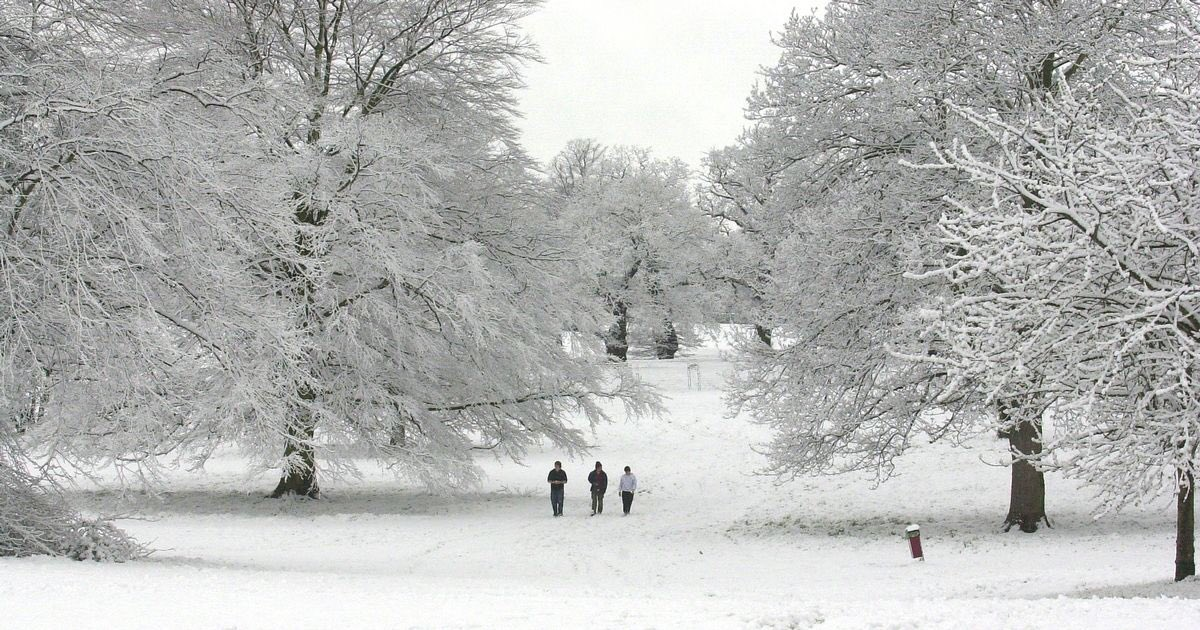 What do we want ??? The snow of course lol... #snowfall #severeWeather #StormHour #extremeWeather #uksnow #winter #Winteriscoming <br>http://pic.twitter.com/HCLU2gPIF4