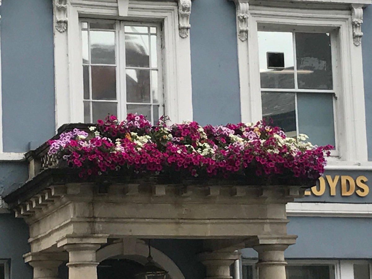 Do you love #flowers? You'll see these colorful view on Bridge Street just down from our office 😊🌸🌺 #NewportView