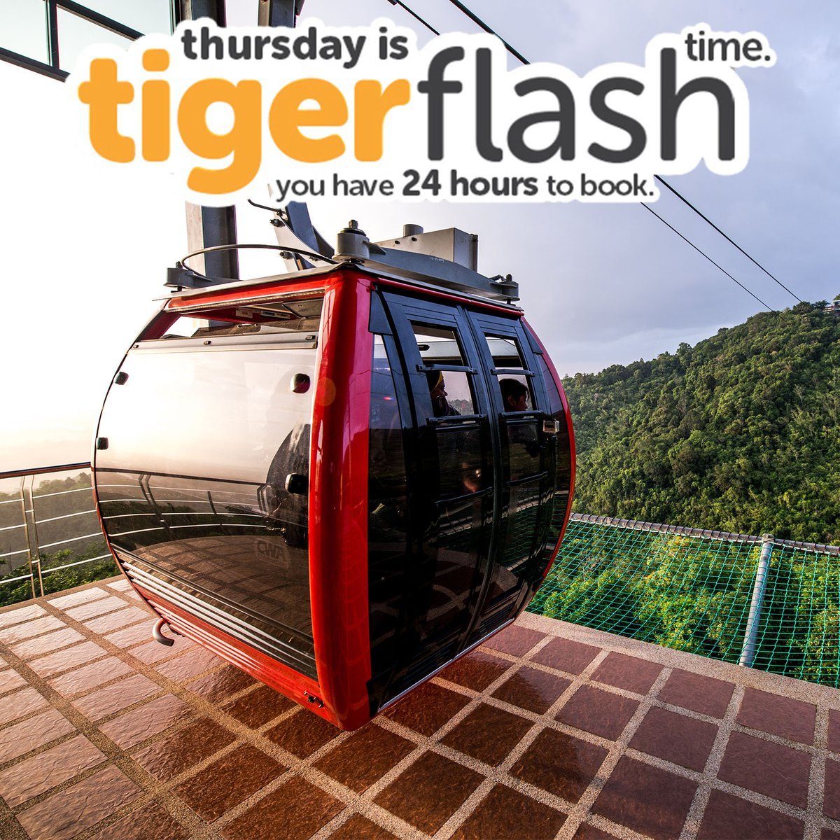 Escape to Hat Yai for a panoramic cable car ride amongst the mountains from only $68*. More #Tigerflash deals: https://t.co/KqQgzDoQZY https://t.co/GiAxfKpTw5