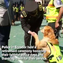 Service Dogs: Police in Ecuador hold retirement ceremony for 16 of their loyal K-9 officers. https://t.co/oSvfiBQ0Pg