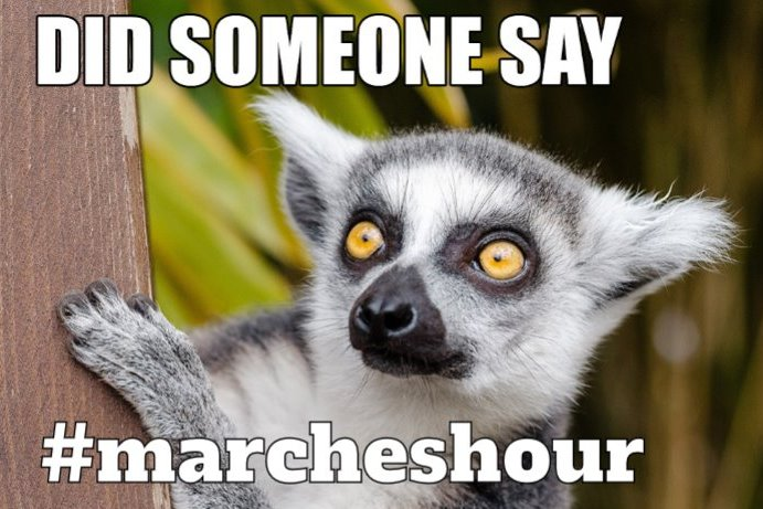 #Wednesday already?  Hello #marcheshour how is everyone today?<br>http://pic.twitter.com/na5bt92uBg