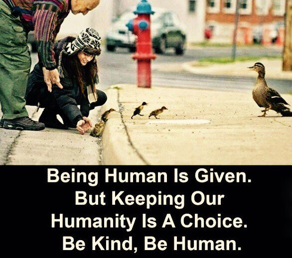 Inspirational Quotes On Twitter Being Human Is Given But Keeping