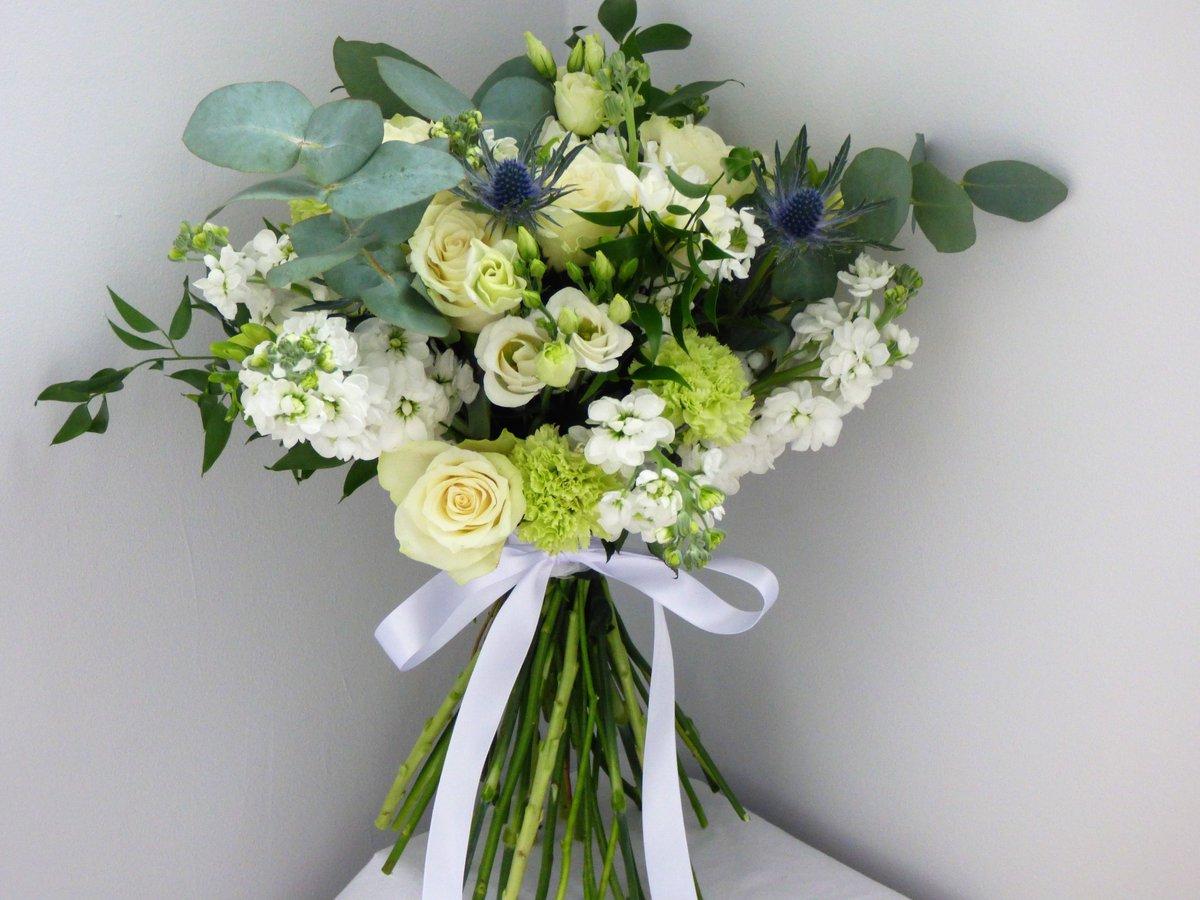 Blue lily flowers bluelilyflowers twitter 0 replies 0 retweets 0 likes izmirmasajfo