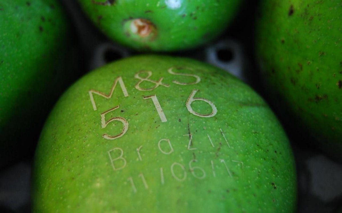 M&amp;S are using laser printed labels on avocados to reduce paper waste    #savetheplanet #plasticpollution    http:// buff.ly/2tpaHDx  &nbsp;  <br>http://pic.twitter.com/qT8HVrCTix