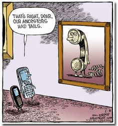 Phone families!  +  !!  #tech #science #bigdata #mobile #innovation #awesome #startups #android #apple #retrotech<br>http://pic.twitter.com/2Siaw4ZYVr
