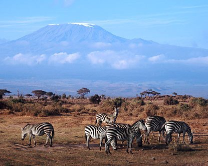#Kenya #safaris are some of the best in all of #Africa! This is where the idea of safaris was born (the word &quot;safari&quot; means &quot;journey&quot;)!<br>http://pic.twitter.com/NSGnqbxjrn