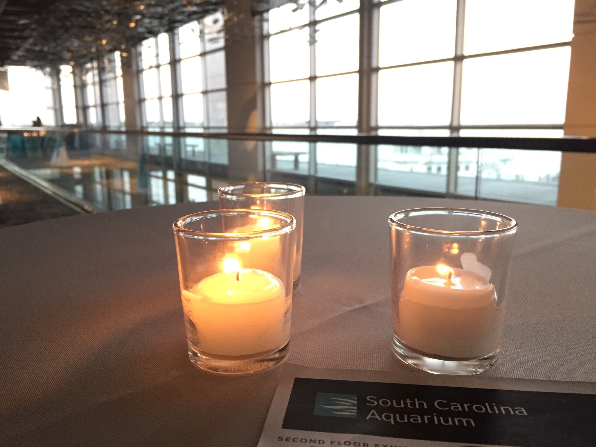 Beautiful facility and evening with #NMEA17. Thank you, @NatlMarineEd https://t.co/uSOR2icWm4