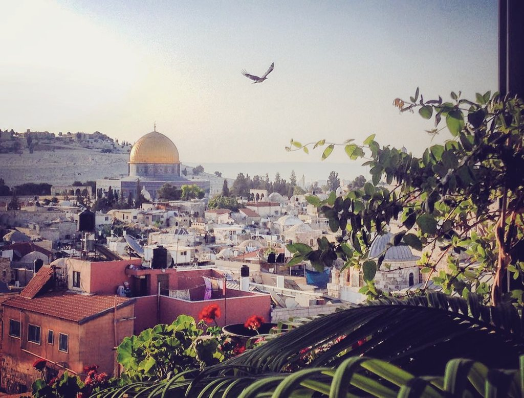 Good morning from the occupied land of Palestine, #Jerusalem #القدس<br>http://pic.twitter.com/OmUe7qPuum
