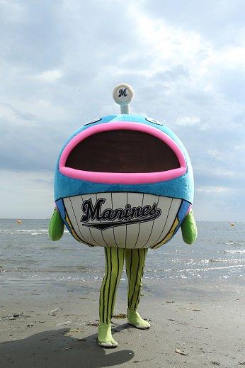 謎の魚が幕張の浜に再上陸しました!呼ばれて、飛び出てジャジャジャジャ~ン!と元気一杯です!本当か嘘か必殺技を近日公開すると豪語しています!(広報) #chibalotte