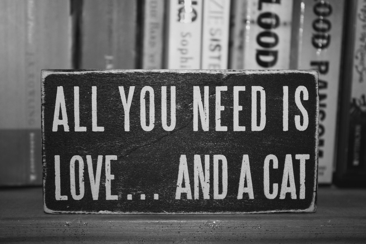 LOVE IS ALL YOU NEED!.... #MeSientoOrgullosoDe #VivirAColores #frases #frasesdeamor #lovequotes #motivation #motivacion #quotes #Inspiracion<br>http://pic.twitter.com/bsuvCXtzwS
