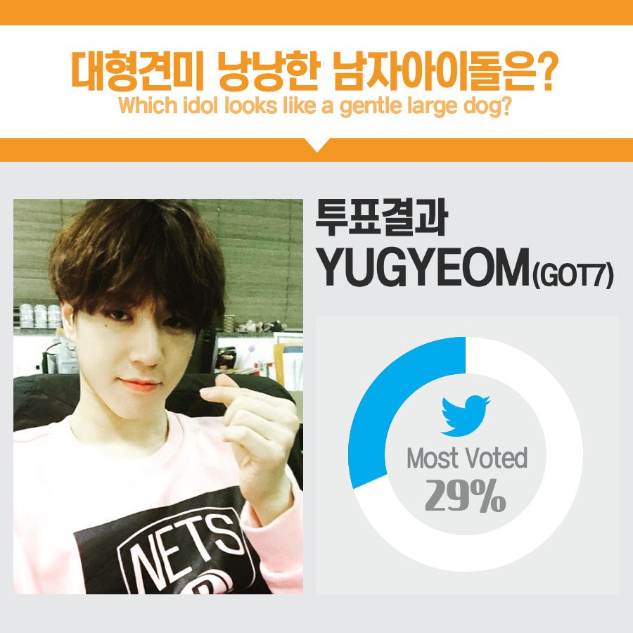 Congratulations! #GOT7 Yugyeom got most votes for &quot;Which Idol looks like a gentile large dog?&quot; Souce: 1theK ( https:// twitter.com/1theK/status/8 80266997623177218 &nbsp; … )<br>http://pic.twitter.com/5qMnhP53j7
