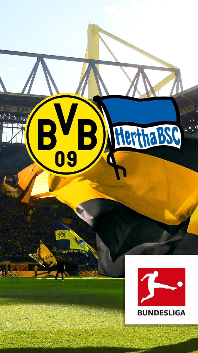 🗓 Der Gegner im ersten Heimspiel 2017/18: @HerthaBSC. #bvbbsc #Spielpl...