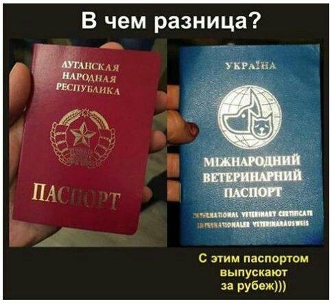 Бестолковое командование российских офицеров приводит небоевым потерям среди террористов, - данные разведки - Цензор.НЕТ 2269