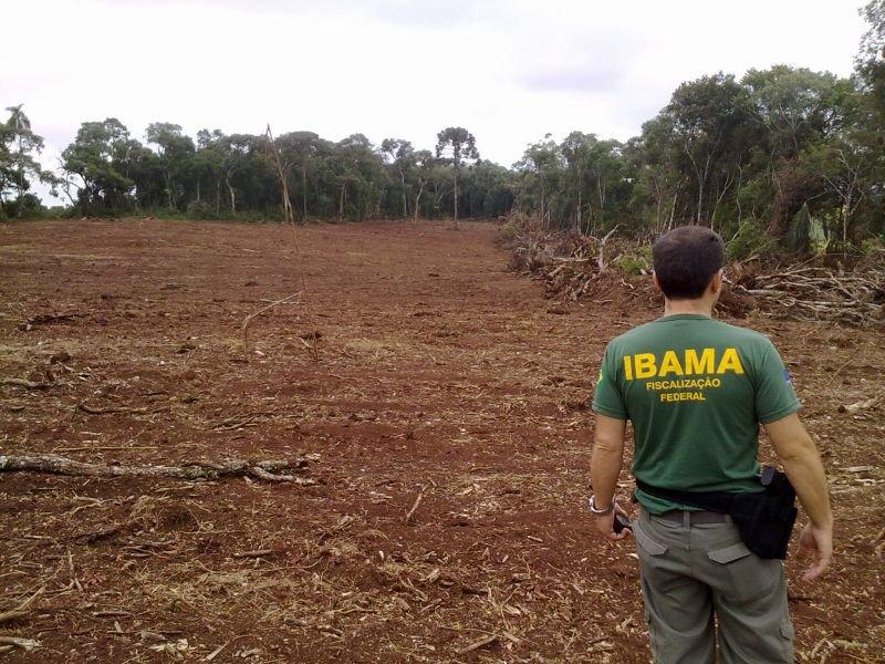 Com nova portaria, servidores do Ibama vão ganhar bônus se aprovarem mais licenças ambientais https://t.co/BBW8qbKMGN