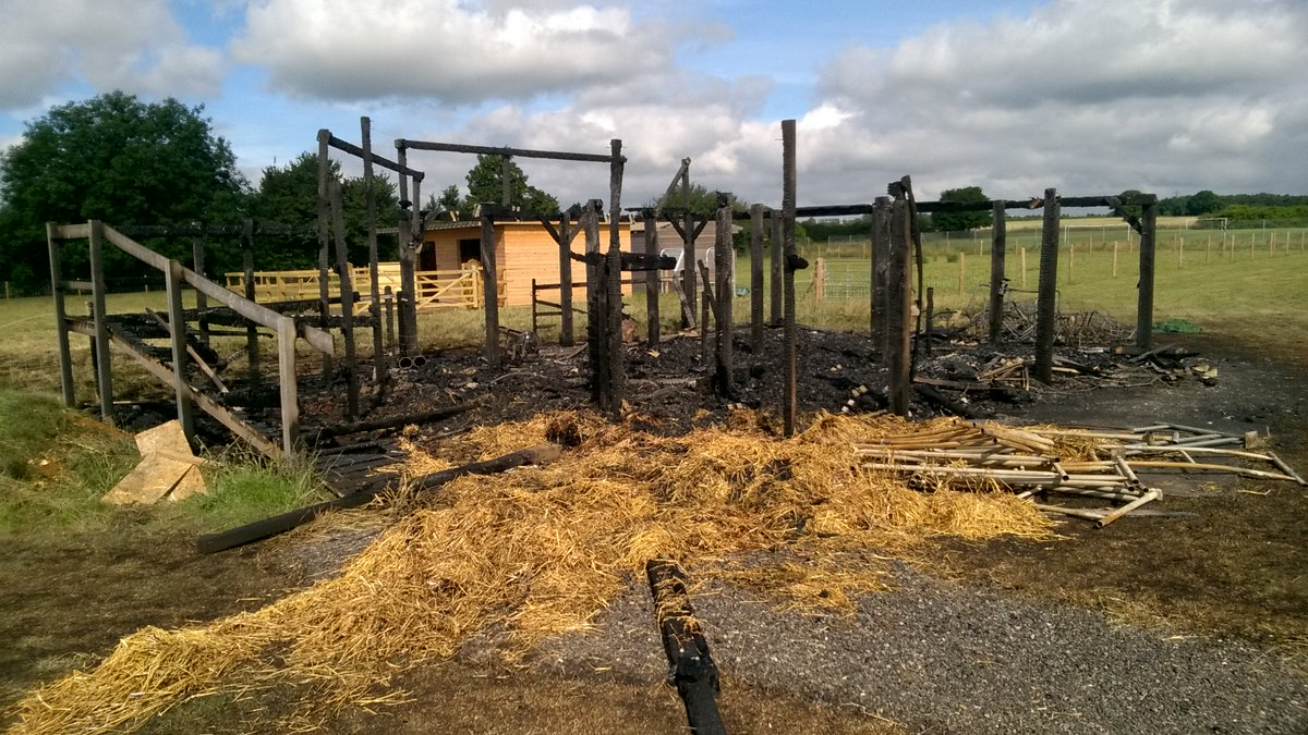 Two donkeys rescued from next to an outdoor class room burned down at St Luke's School. Being treated as arson.