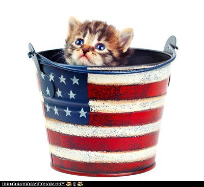 flag bucket with kit