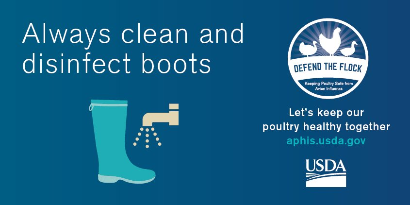 #ProTip: Always clean and disinfect boots when entering/leaving poultry farms. #DefendtheFlock #Biosecurity https://t.co/RwrwOGlp4T