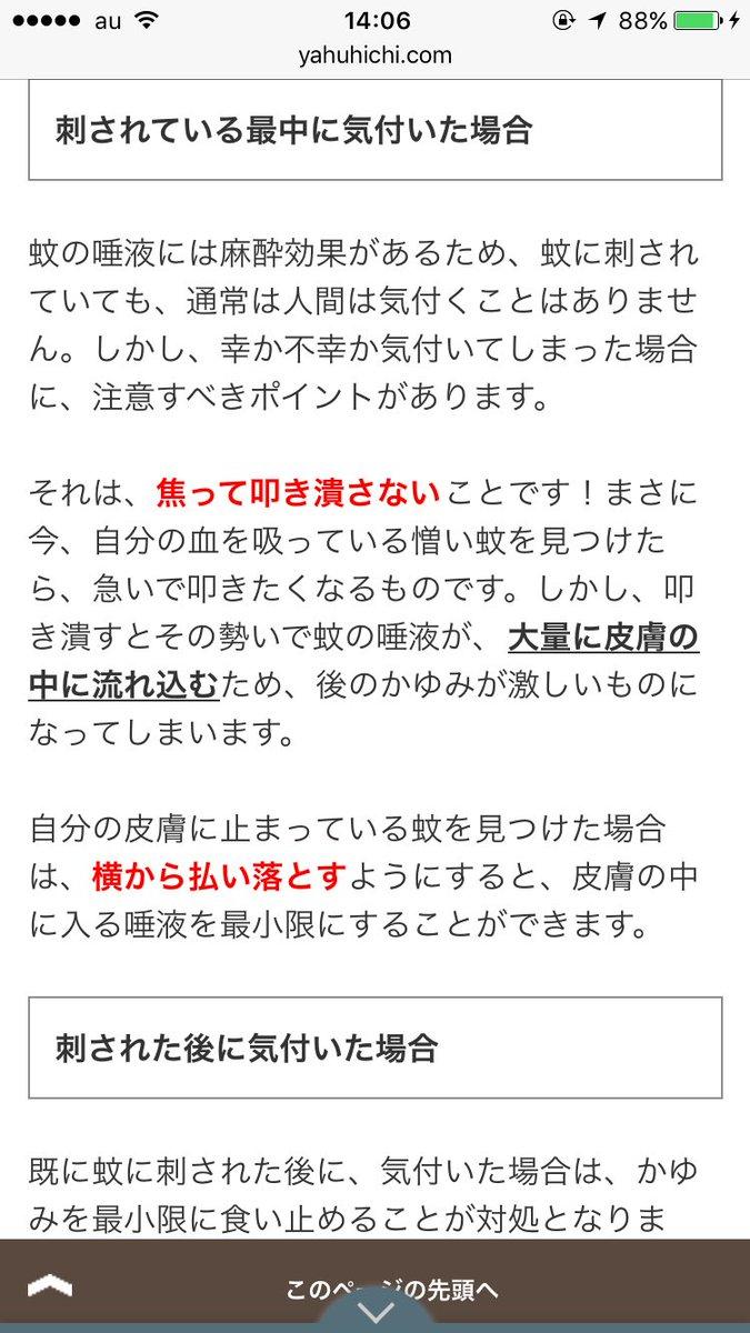 """岩田恵里 on Twitter: """"蚊に刺さ..."""